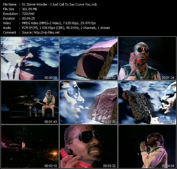 Stevie Wonder - I Just Call To Say I Love You