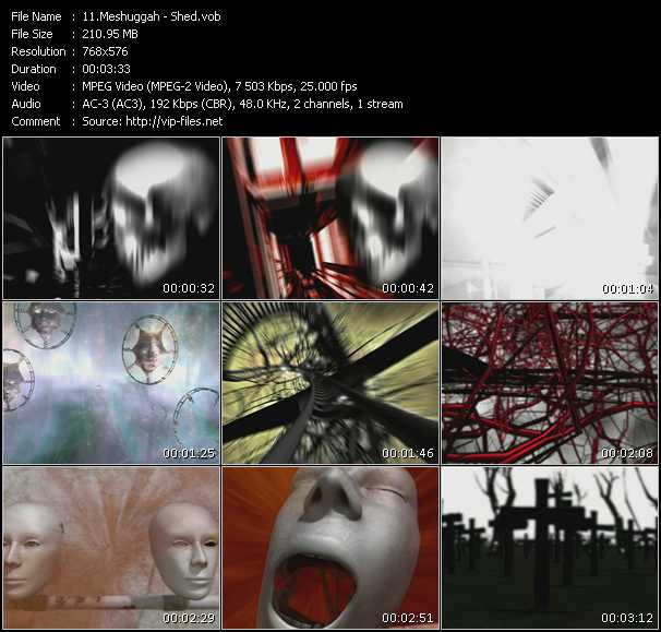 Meshuggah - Shed