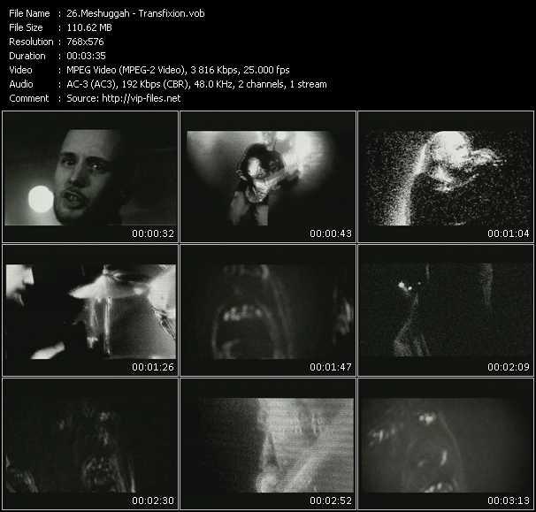 Meshuggah - Transfixion