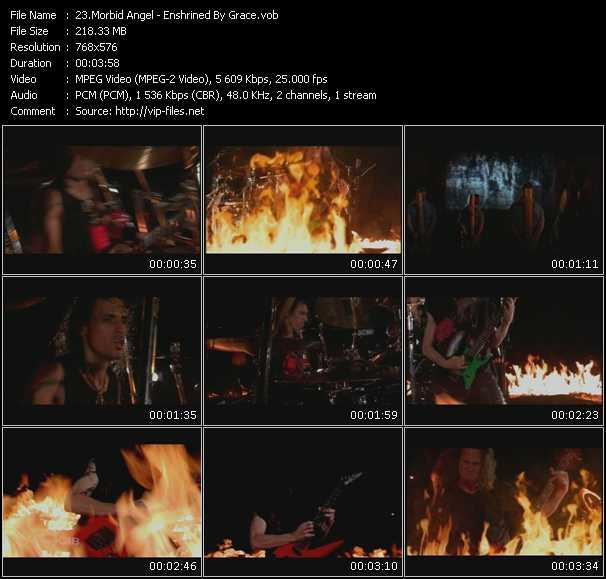 Morbid Angel - Enshrined By Grace